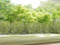 ブランズ六本木